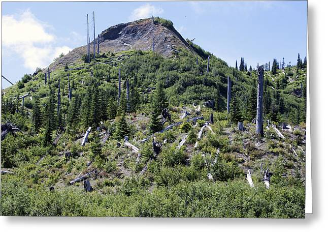 Mount Saint Helens National Volcanic Monument - 0029 Greeting Card by S and S Photo