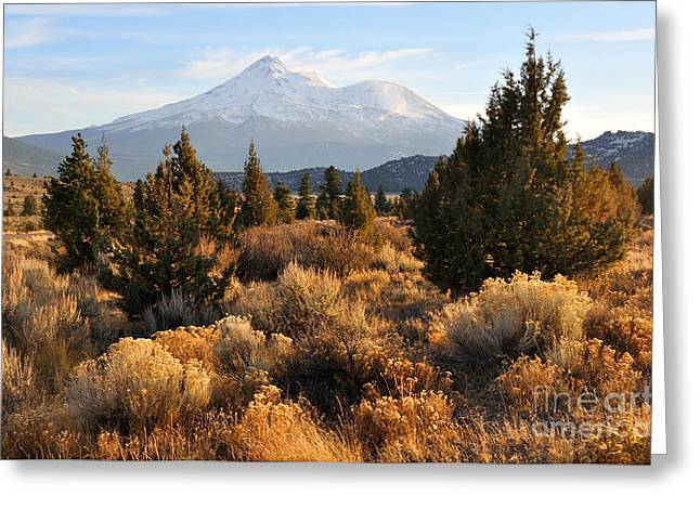 Mount Shasta In The Fall  Greeting Card