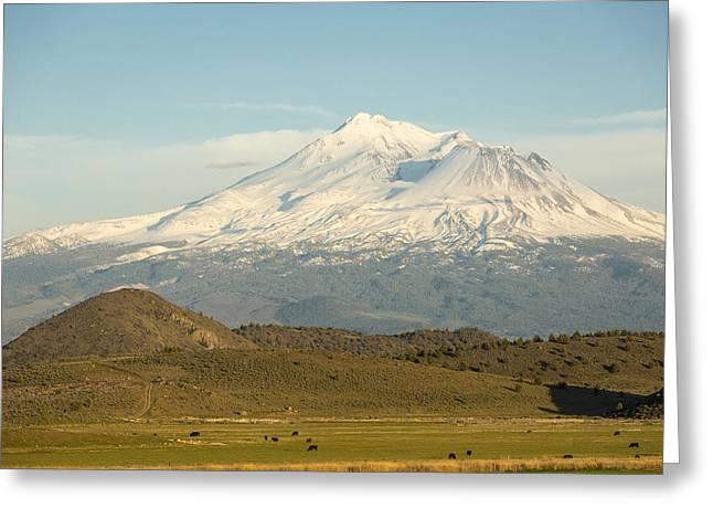 Mount Shasta Greeting Card by John Ferrante