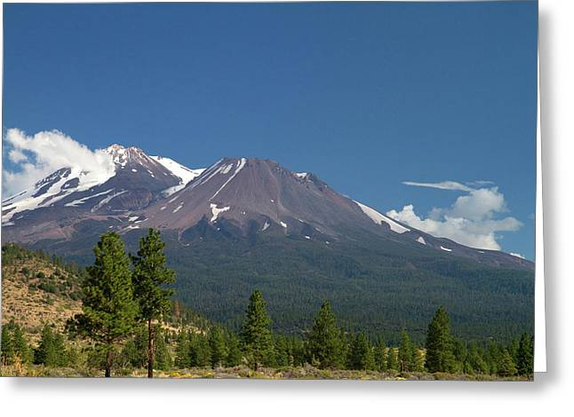 Mount Shasta North Facing Side Located Greeting Card by David R. Frazier