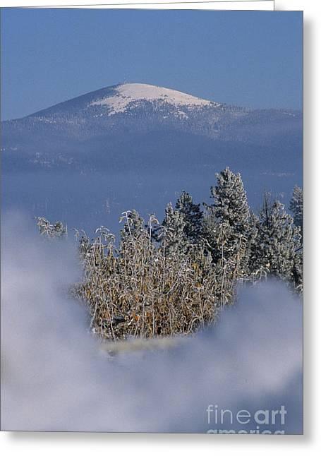 Mount Spokane Greeting Card by Sharon Elliott