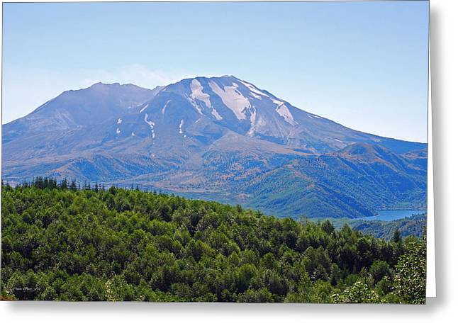 Mount St. Helens And Castle Lake In August Greeting Card by Connie Fox