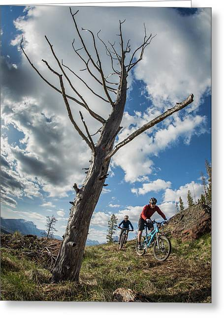 Mountain Bikers Riding At Crowsnest Greeting Card