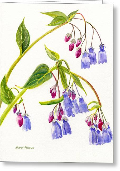 Mountain Bluebells Vertical Design Greeting Card by Sharon Freeman