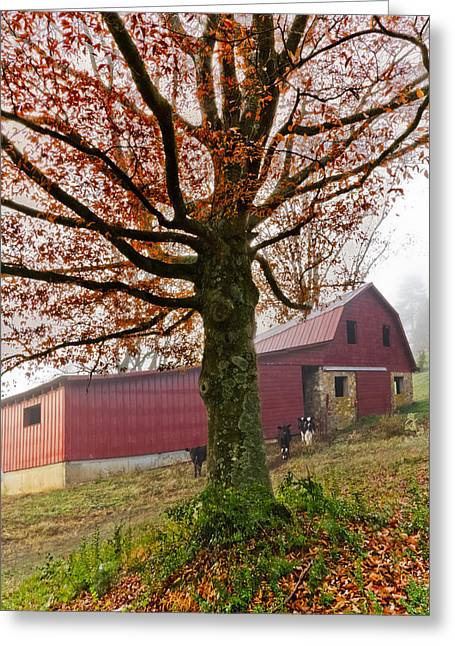 Mountain Dairy Farm Greeting Card by Debra and Dave Vanderlaan