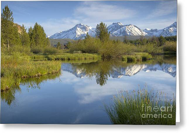 Mountain Daydream Greeting Card by Idaho Scenic Images Linda Lantzy
