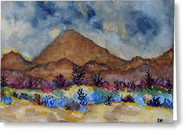 Mountain Desert Scene Greeting Card by Connie Valasco
