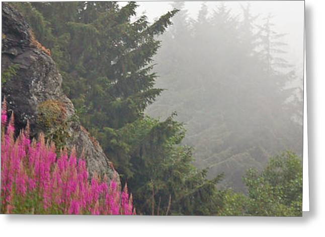 Mountain Fog Greeting Card by Chuck Flewelling