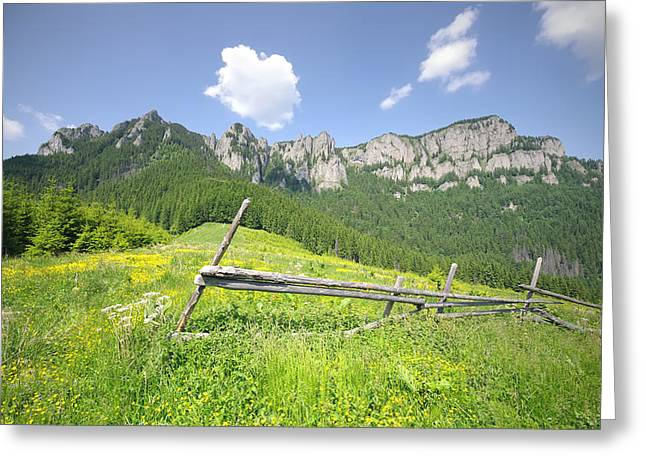 Mountain Landscape  Greeting Card by Ioan Panaite