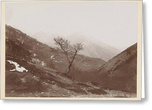 Mountain Landscape With Bare Tree And Some Snow Greeting Card