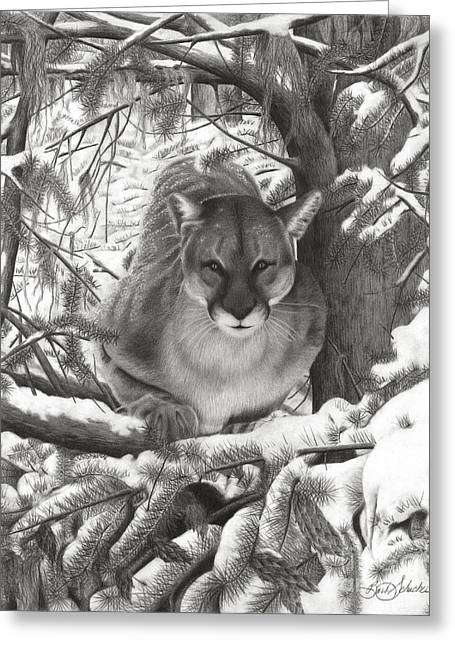 Mountain Lion Hideout Greeting Card