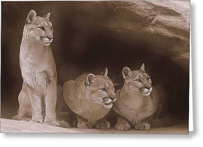 Mountain Lion Trio On Alert Greeting Card