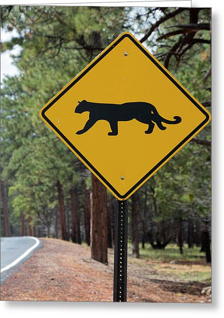 Mountain Lion Warning Sign Greeting Card by Jim West
