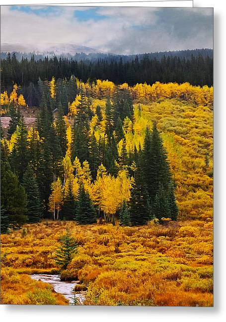 Mountain Meadows Greeting Card by Mary Machare