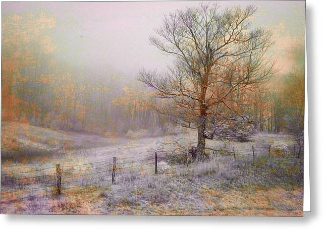 Mountain Mist II Greeting Card by William Beuther