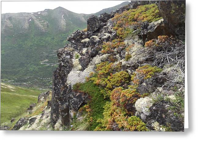 Mountain Of Youth Greeting Card