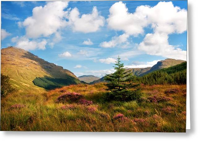 Mountain Pastoral. Rest And Be Thankful. Scotland Greeting Card by Jenny Rainbow