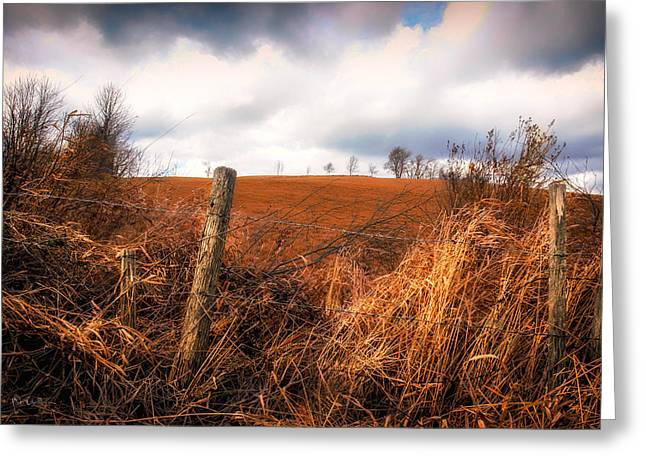 Mountain Pasture Greeting Card by Bob Orsillo