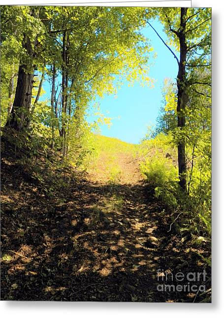 Mountain Path Greeting Card by Judy Via-Wolff