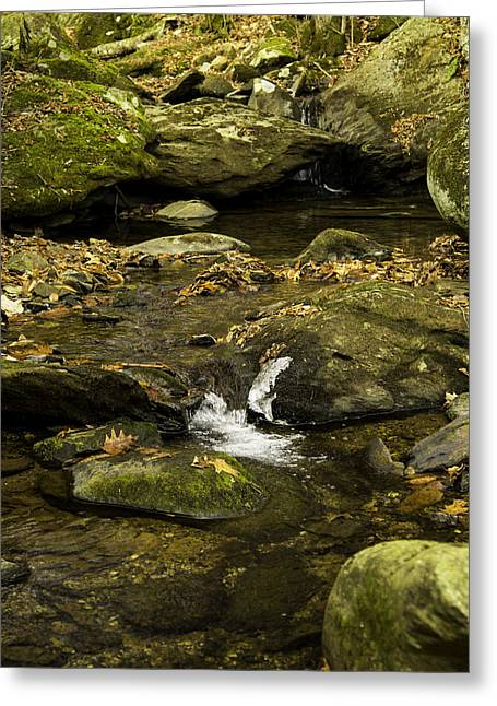 Mountain Pools Greeting Card