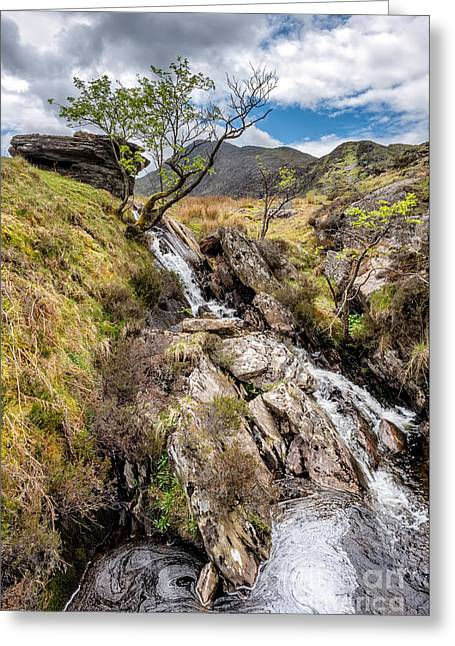 Mountain River Greeting Card by Adrian Evans