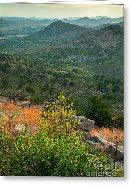 Mountain 's View Greeting Card by Iris Greenwell