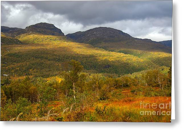Mountain Scenery In Fall Greeting Card by Gry Thunes