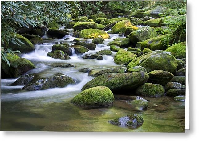 Mountain Stream 1 Greeting Card