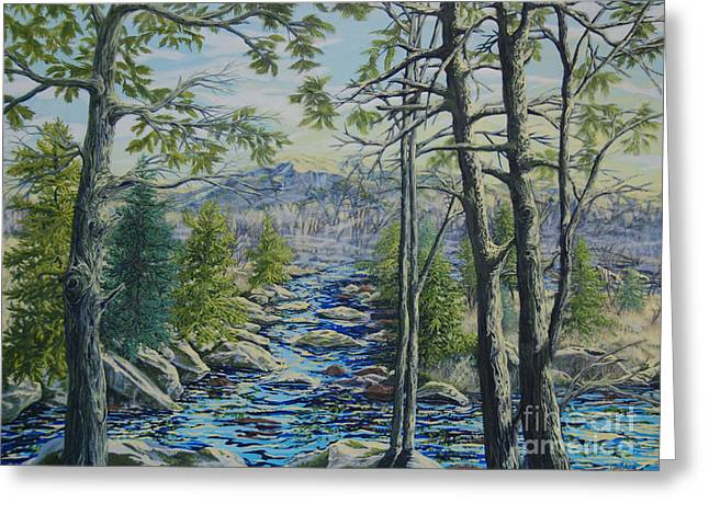 Mountain Stream II Greeting Card by Gail Allen