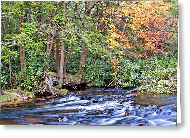 Greeting Card featuring the photograph Mountain Stream In Autumn Pocono Mountains Pennsylvania by A Gurmankin