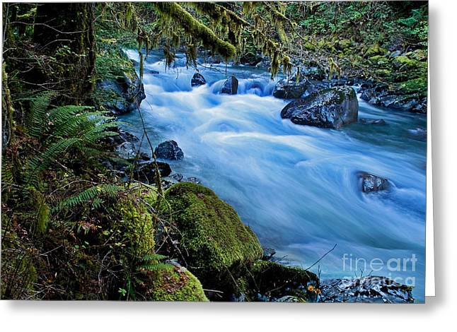 Greeting Card featuring the photograph Mountain Stream In Forest - Nooksack River Washington by Valerie Garner