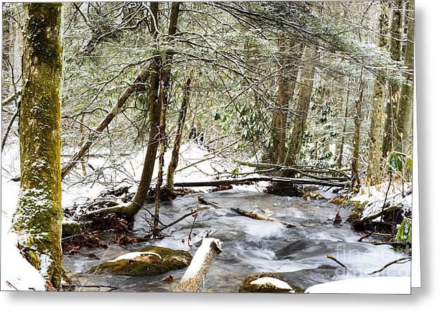Mountain Stream In Winter Greeting Card