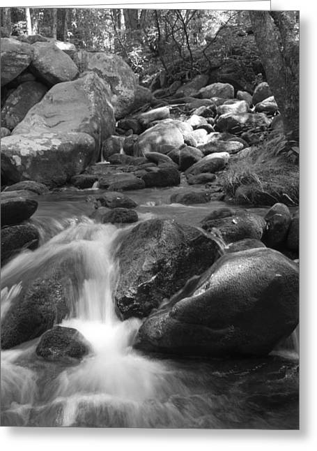 Mountain Stream Monochrome Greeting Card