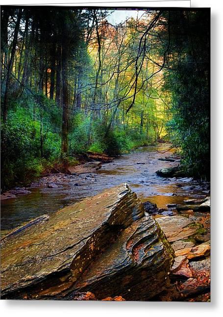 Mountain Stream N.c. Greeting Card