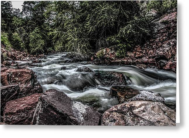 Mountain Stream Greeting Card by Ray Congrove