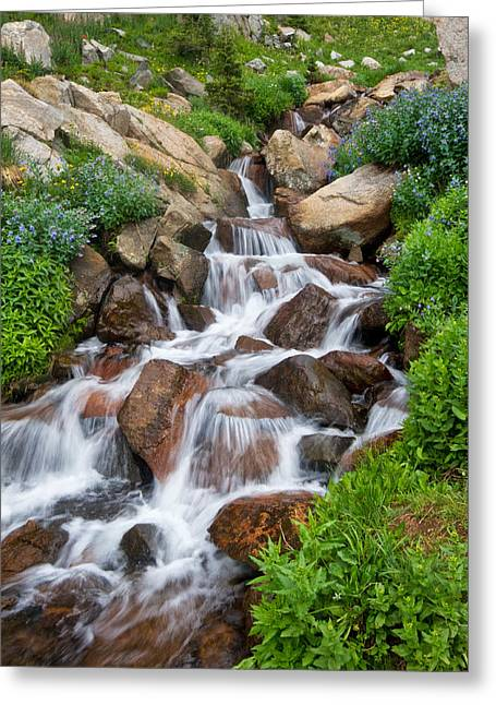 Greeting Card featuring the photograph Mountain Stream by Ronda Kimbrow