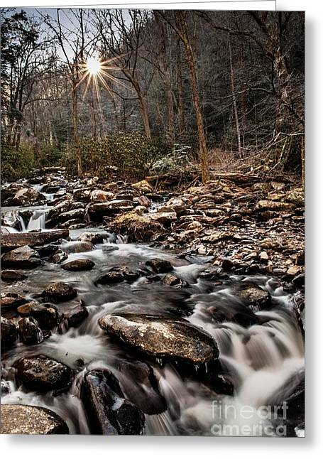 Greeting Card featuring the photograph Icy Mountain Stream by Debbie Green