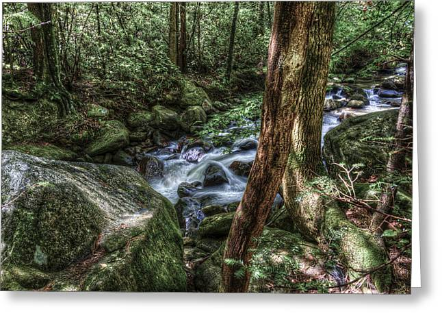 Mountain Streaming Greeting Card