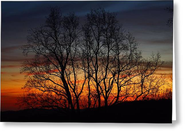 Greeting Card featuring the photograph Mountain Sunset by Kathryn Meyer