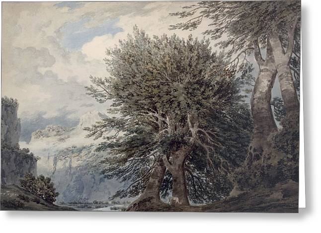 Mountainous Landscape With Beech Trees Greeting Card by John Robert Cozens