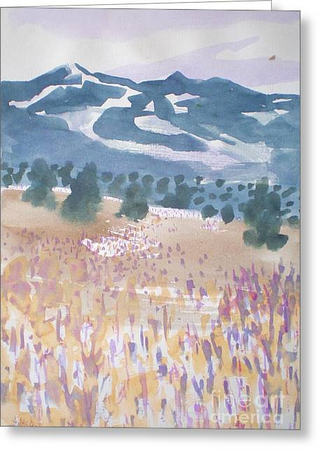 Mountains And Field Greeting Card