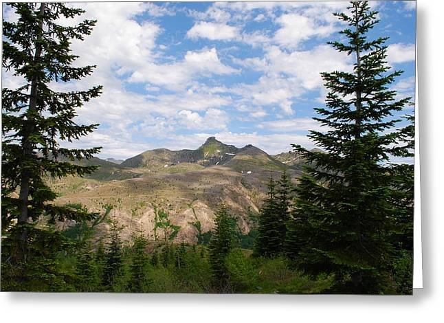 Greeting Card featuring the photograph Mountains And Fir Trees by Robert  Moss