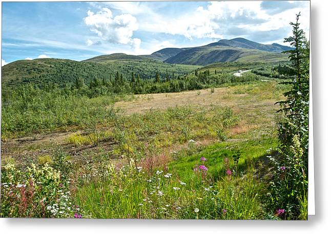 Mountains And Wildflowers Along  Taylor Highway-ak  Greeting Card by Ruth Hager