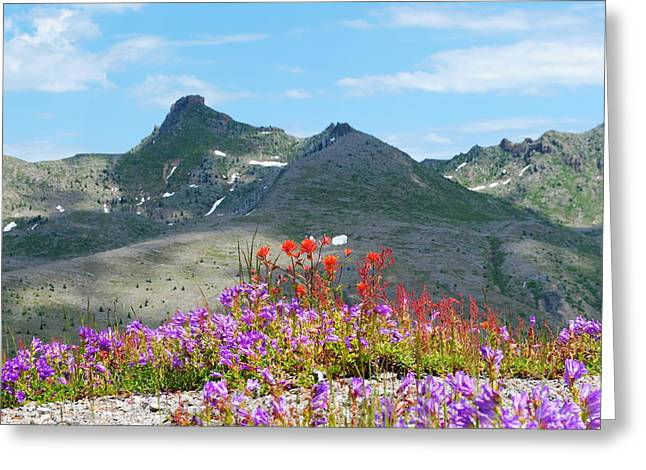 Mountains And Wildflowers Greeting Card