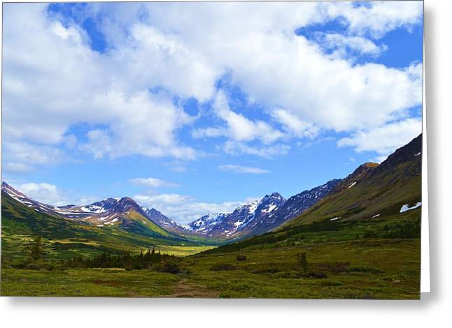 Mountains In Anchorage Alaska Greeting Card