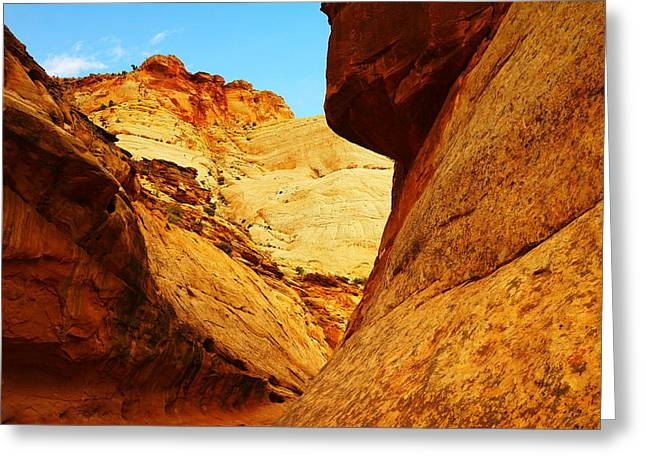Mountains In Zion Greeting Card by Jeff Swan