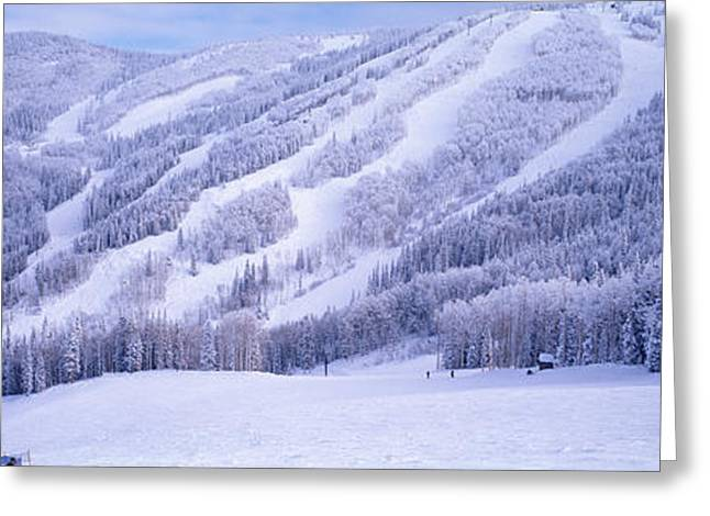 Mountains, Snow, Steamboat Springs Greeting Card by Panoramic Images