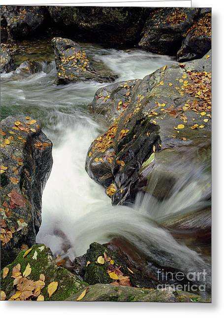 Mountains Stream 2004 Greeting Card