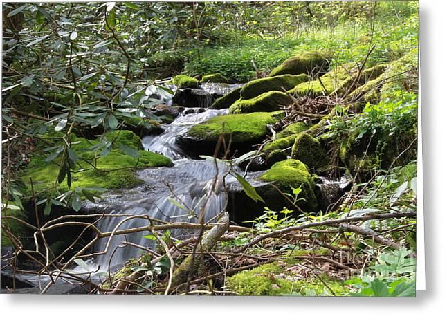 Mountian Cascade Greeting Card
