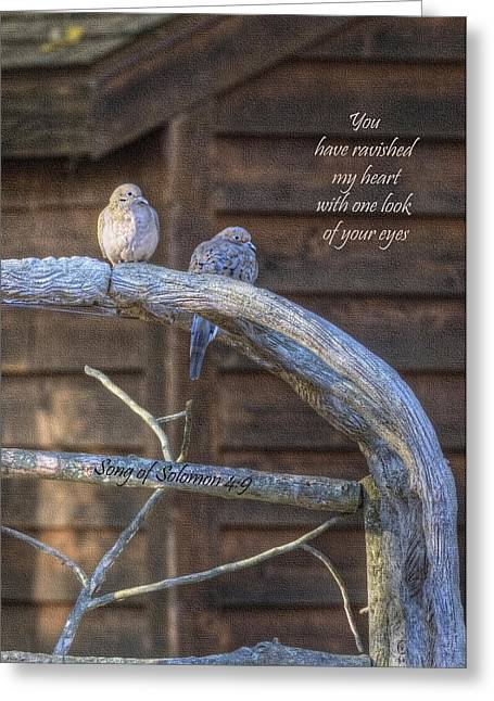 Mourning Doves Greeting Card by Cheryl Birkhead